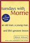 Hibiscus Plant Tuesdays with Morrie