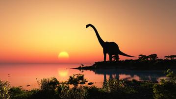 My Beloved Brontosaurus: A Grown-Up Book About Dinos
