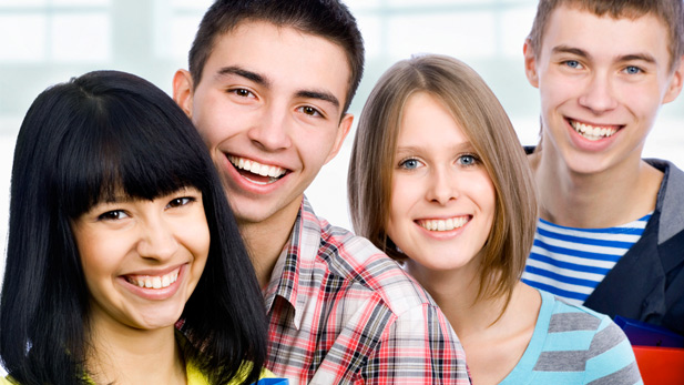 sociology social cliques in high school essay