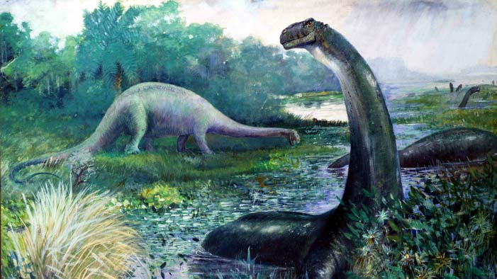 Biggest Dinosaur Ever Discovered in Argentina