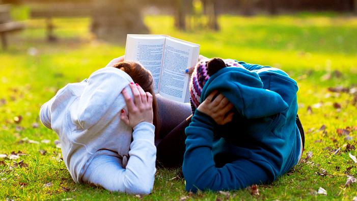 essay tv better than books