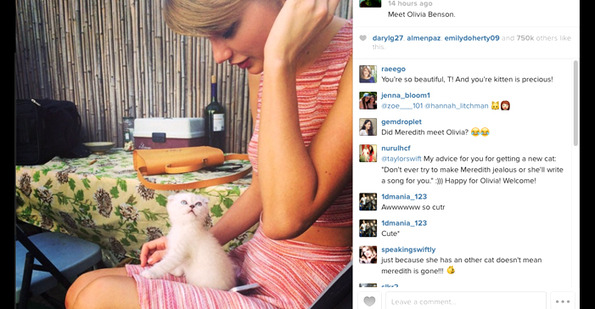 TSwift Got a New Kitten and GOOD GOURDS JUST LOOK AT IT