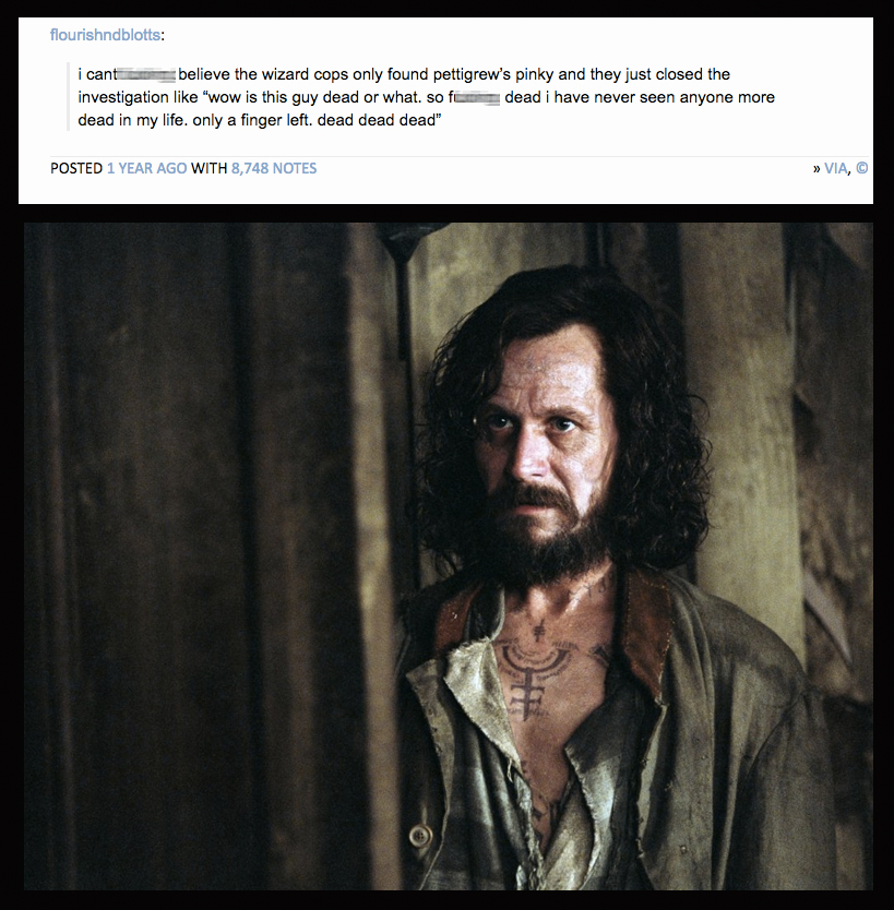 SparkLife » The 12 Best Harry Potter Tumblr Posts That You ...