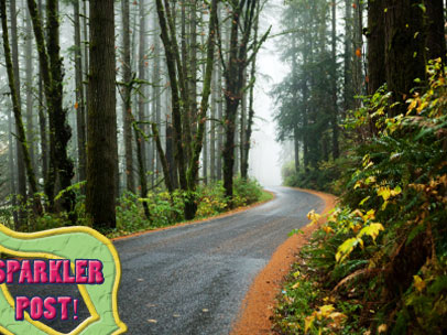 Forks, Washington: Don't Believe the Hype