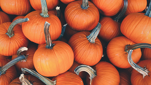 Open Thread for October 11!