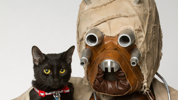 Star Wars Characters Pose With Shelter Pets For Adorable Photo Series