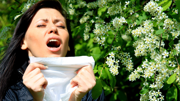 How To Conquer Your Itch-tastic Allergies