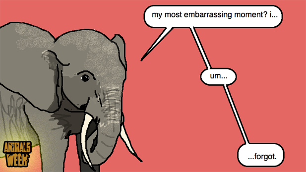 Animal Embarrassments, Illustrated