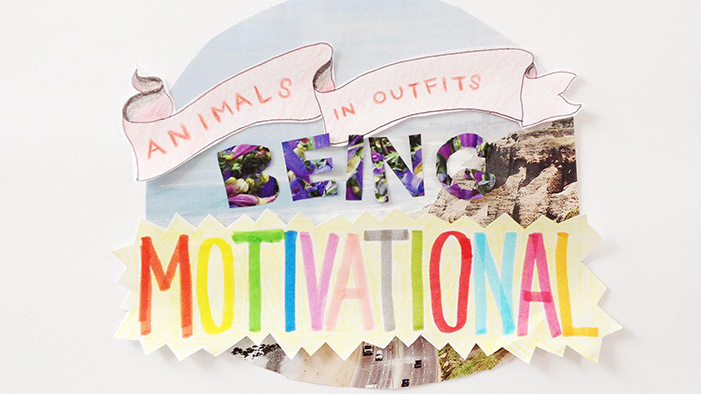 Animals in Outfits Being Motivational