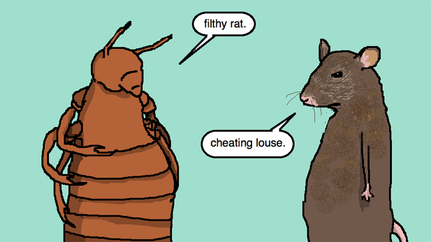 Auntie SparkNotes: Should I Rat Out My Cheating Classmate?