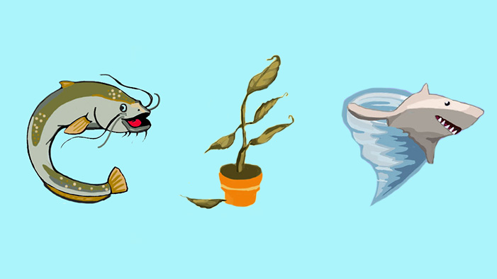 10 Essential Emojis That NEED to Exist