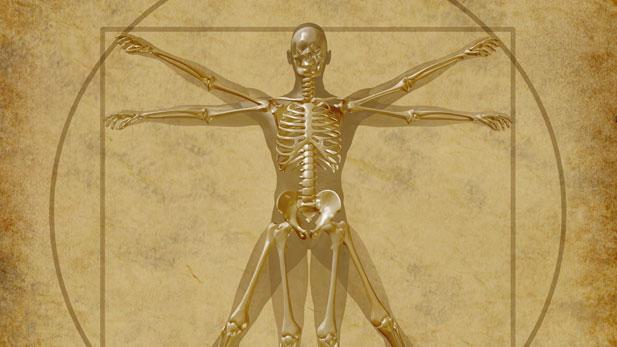 7 Weird Fantasy Creature Anatomies