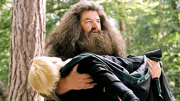 QUIZ: Which of Hagrid's Mistakes Would You Make?