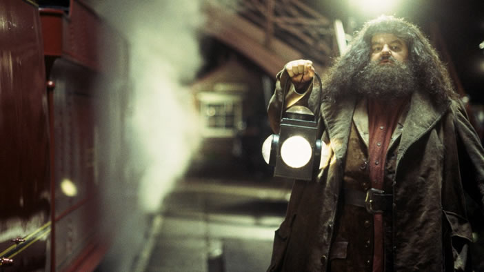 Which of Hagrid's Mistakes Would You Make?