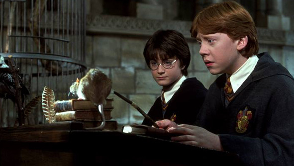 My School Taught the <em>Harry Potter</em> Books, and It Was the Worst Thing Ever