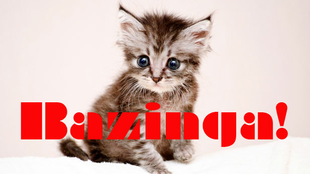 Geek Quiz: Big Bang Theory. With Kittens.