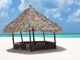 Blogging Lord of the Flies, Chapter 3: Huts on the Beach