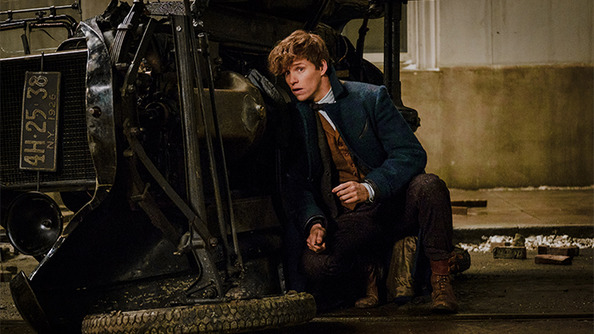15 Questions <em>Fantastic Beasts and Where to Find Them</em> Needs to Answer