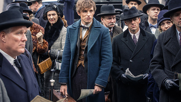 6 Spoiler-Free Reasons You Should See <em>Fantastic Beasts and Where to Find Them</em>
