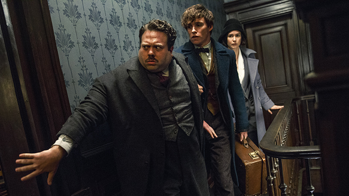 The Characters from <em>Fantastic Beasts and Where to Find Them</em>, Ranked in Order of Hair