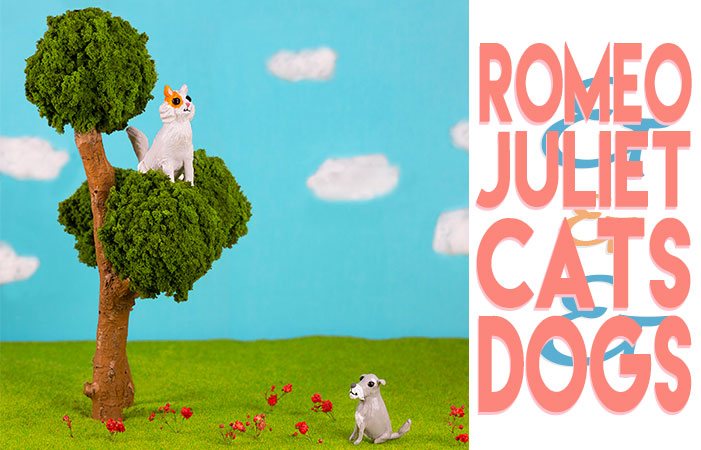 Romeo and Juliet and Cats and Dogs