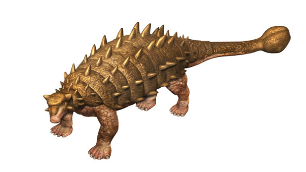 New Porcupine-Esque Dinosaur Discovered
