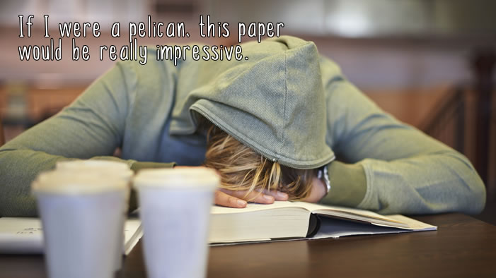 18 Thoughts Everyone Has During Finals