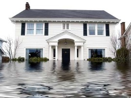 What It's Like to Live in... a Flood Zone
