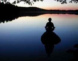 Feelin' Zen in 2010