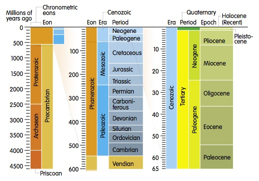the geologic time scale. on the geologic timescale