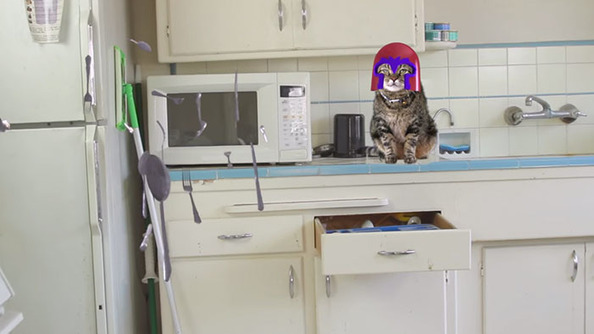 Magneto Cat: Like Your Tungsten-Jawed Crush From <i>X-Men</i> Only With Furrier Motives